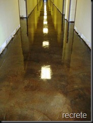 Eco-Stain-over-Ardex-School-Hallway