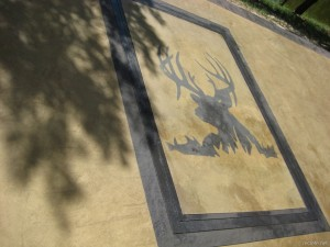 Images in Concrete Stain